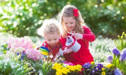 29 Gardening Activities for Kids