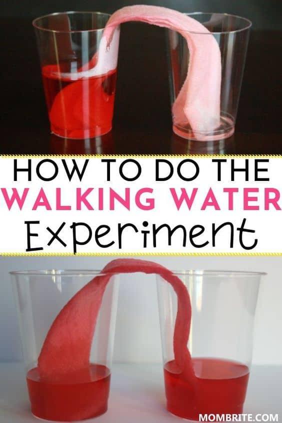 Walking-Water-Experiment-Pin