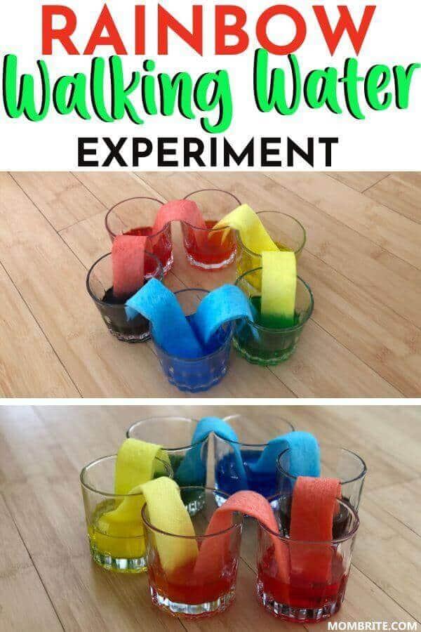 Rainbow-Walking-Water-Experiment