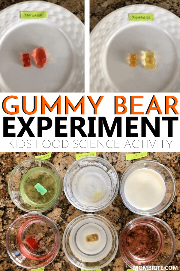 gummy bear experiment pin