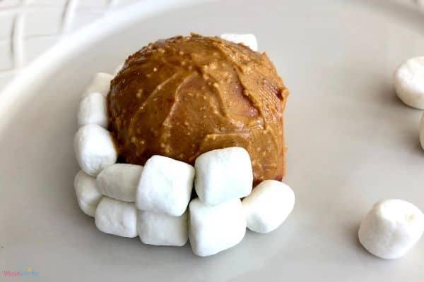 Building Marshmallow Igloo