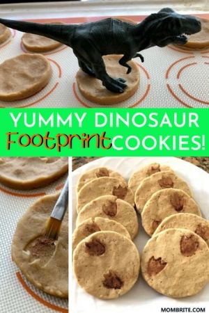 Dinosaur Footprint Cookies Pin