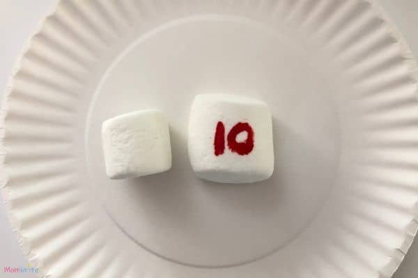 Microwave Marshmallow Experiment 10 Seconds