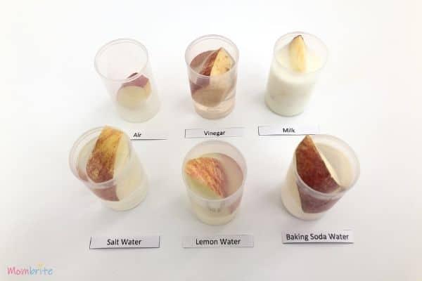 Apple Oxidation Experiment Soak in Liquids
