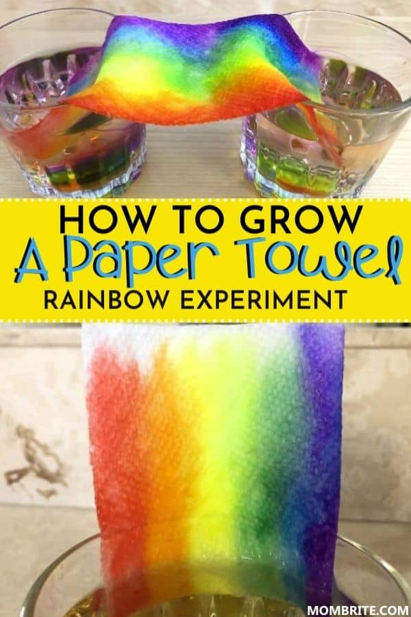 How to Grow a Paper Towel Rainbow Pin