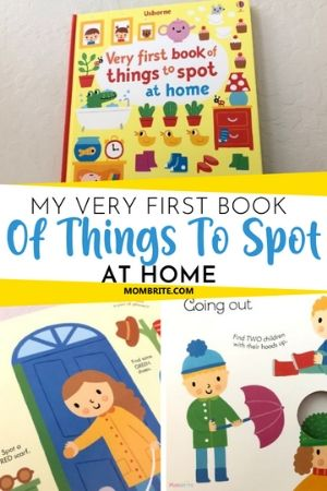 My Very First Book of Things to Spot at Home Review