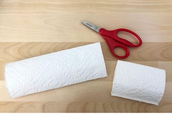 Rainbow Paper Towel Cut