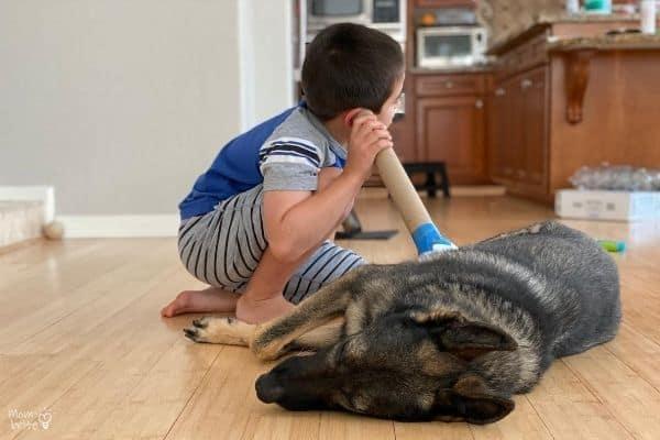 DIY Stethoscope Dog