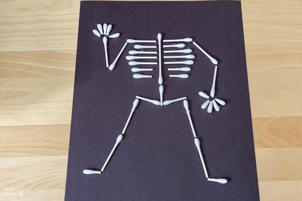 QTip Skeleton Limbs