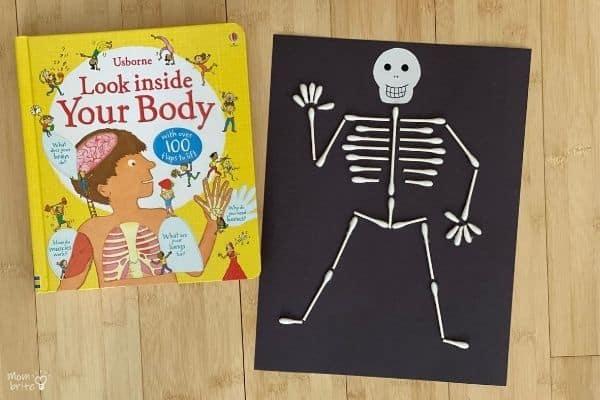 QTip Skeleton Look Inside Your Body