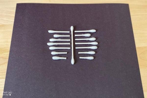 QTip Skeleton Ribs