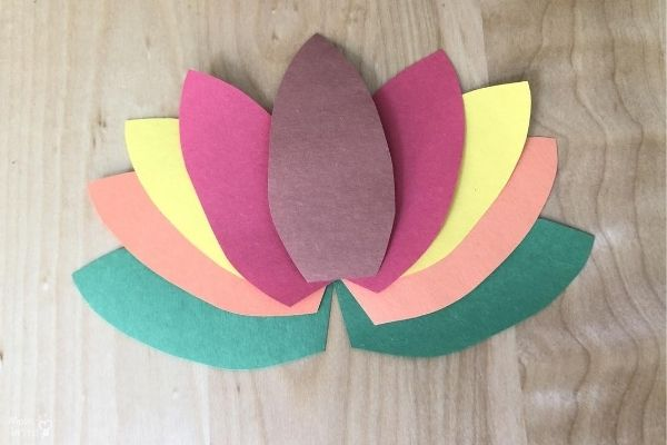Toilet Paper Turkey Craft Arrange Feathers