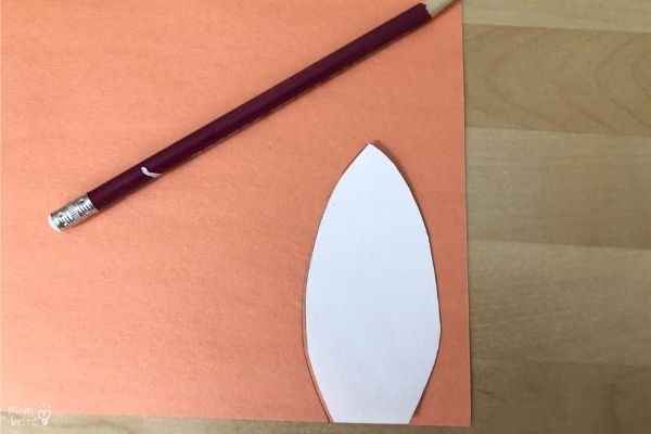 Toilet Paper Turkey Craft Feather Trace