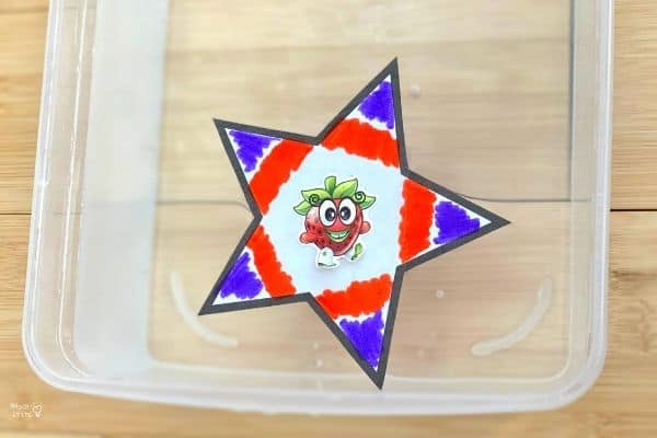 Blooming Paper Star Opened