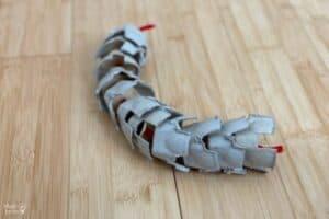 Egg Carton Spine Bended