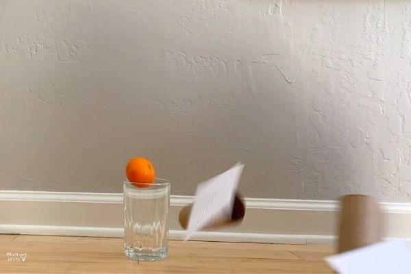 Inertia Experiment Fruit Drop