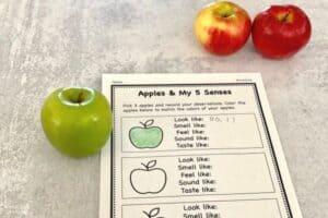 Apple 5 Senses Experiment Example