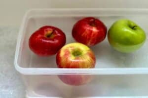 Apple Float or Sink Experiment (2)