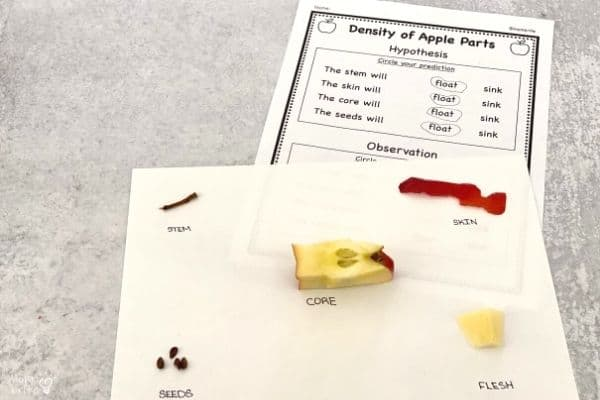 Density of Apple Parts Hypothesis