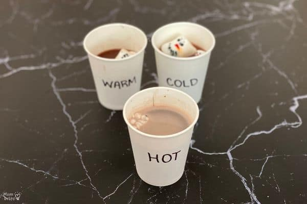 Hot Cocoa Marshmallow Experiment (1)