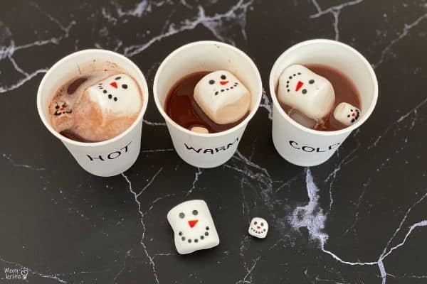 Hot-Cocoa-Marshmallow-Experiment-Melted-1