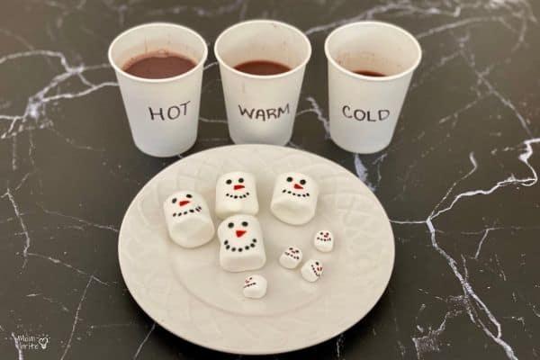 Hot-Cocoa-Marshmallow-Experiment-Setup-2