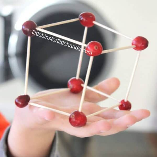 Thanksgiving Cranberry Structures2