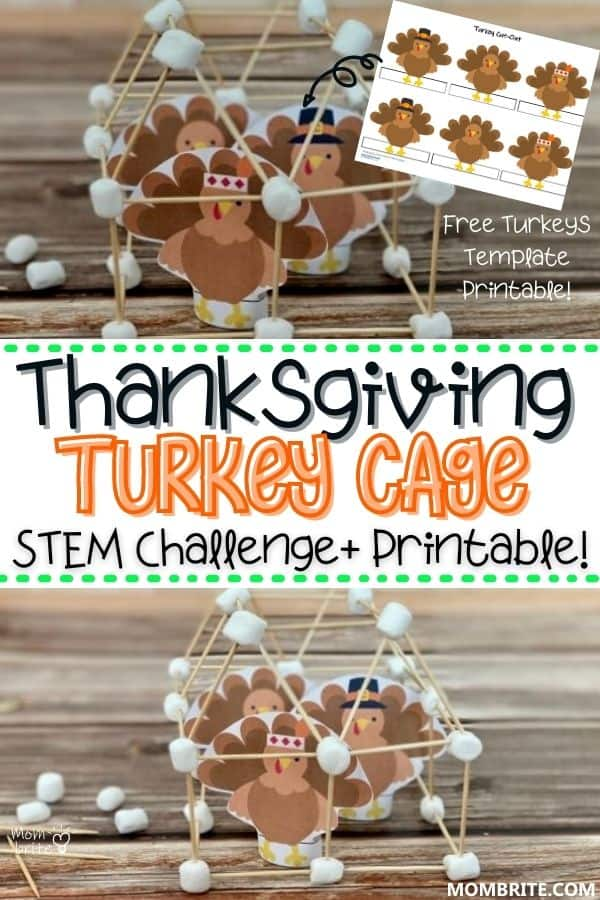 Thanksgiving Turkey Cage Stem Challenge Pin