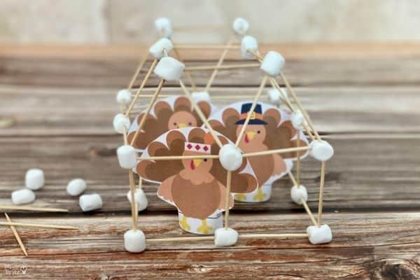 Turkey Cage Challenge (1)