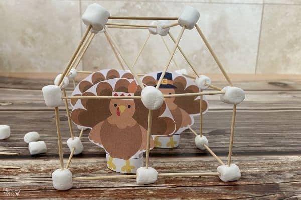 Turkey Cage Challenge (2)