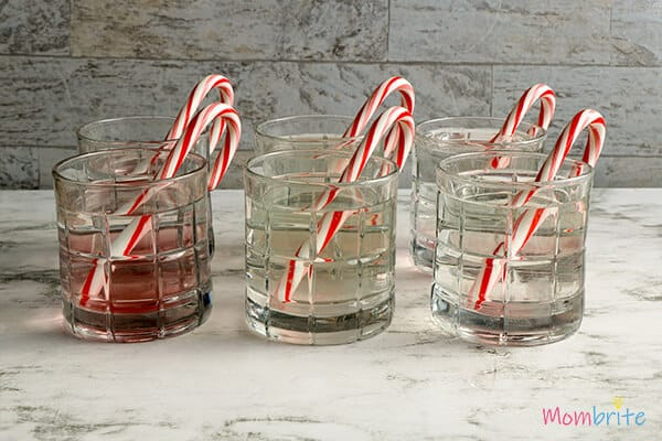 6 cups water 6 candy canes