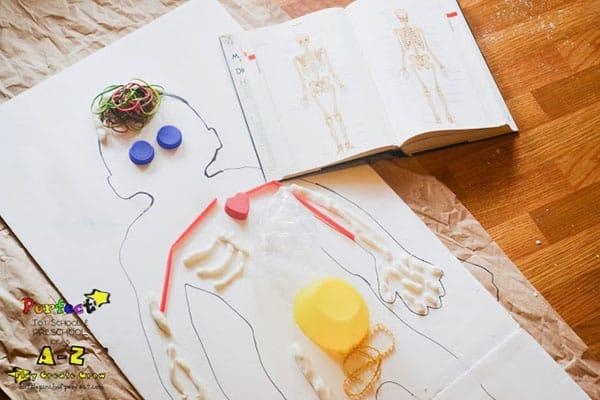 Body Preschool Activity