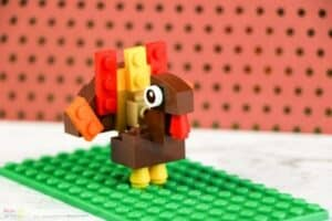LEGO Turkey Finished 1
