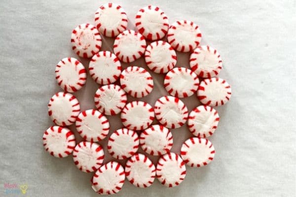 Peppermint Bowl Experiment (1)