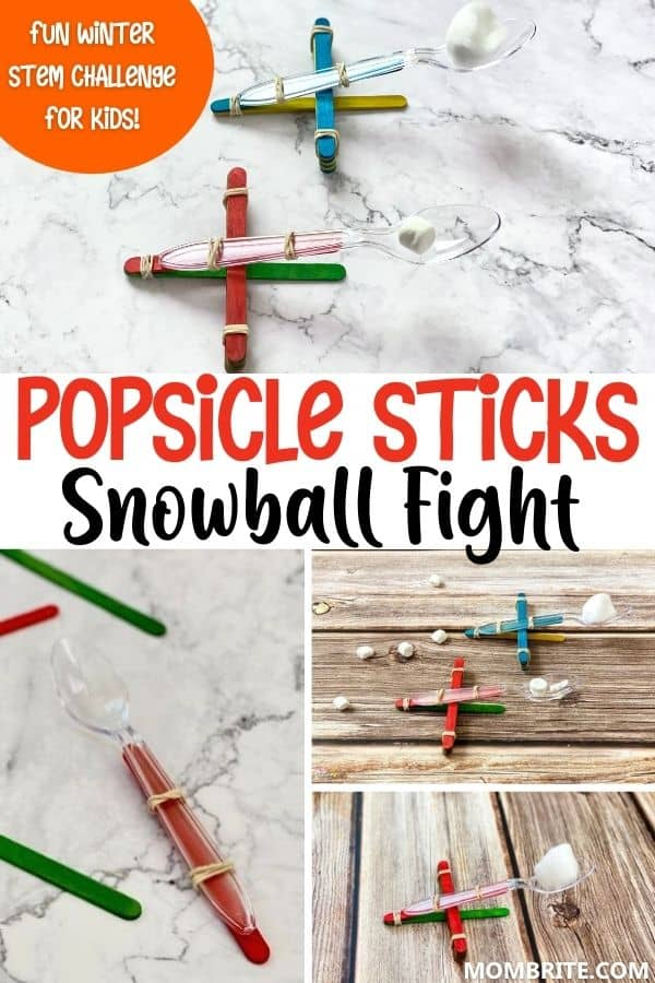 Popsicle Sticks Snowball Fight Pin