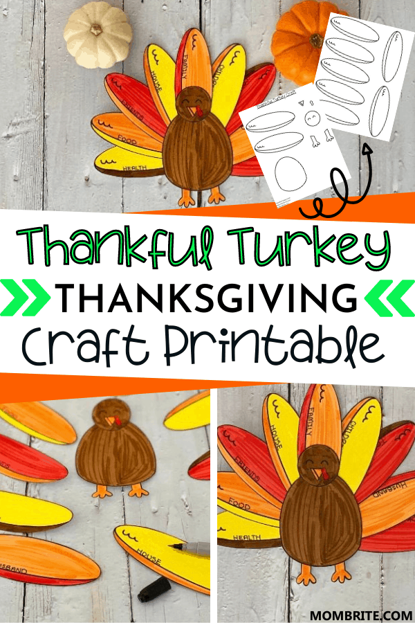 Thankful Turkey Craft Pin