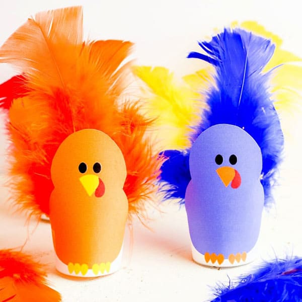 Turkey Feathers Color Matching Game