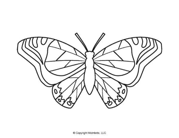 Free Printable Butterfly Template 5