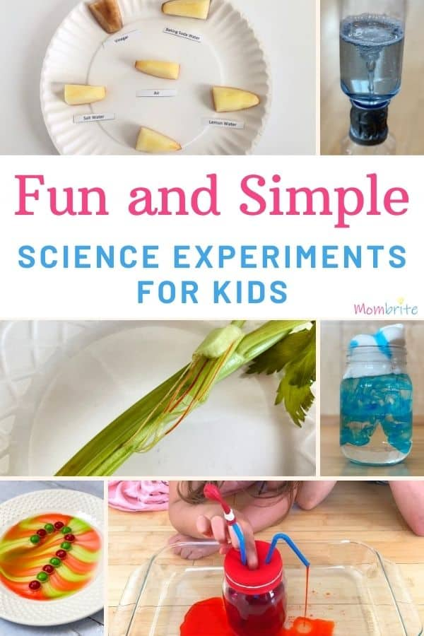 Fun and Simple Science Experiments for Kids Pin
