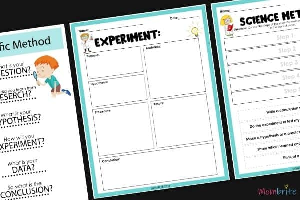 Scientific Method for Kids Experiment Worksheet