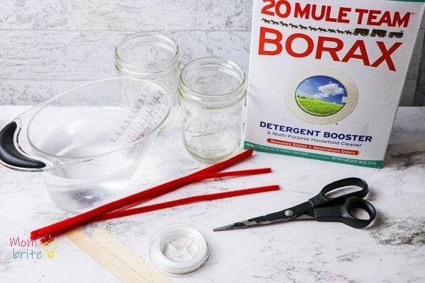 Supplies to grow borax crystals