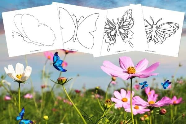 free-printable-butterfly-templates-image