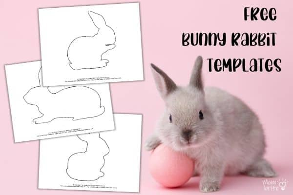 Bunny Rabbit Templates