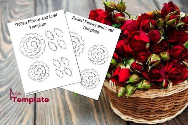 Rolled Flower and Leaf Template