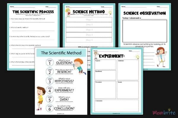 Scientific Method for Kids Worksheet
