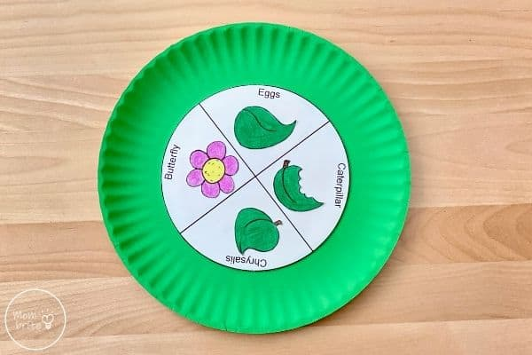 Butterfly Life Cycle Craft Glue Leaves and Flowers on Inner Circle