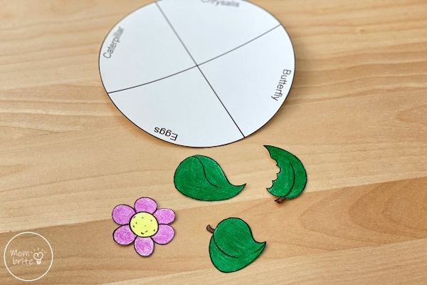 Butterfly Life Cycle Craft Template Pieces