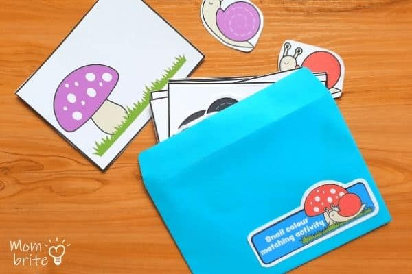 Color Matching Activity Envelope