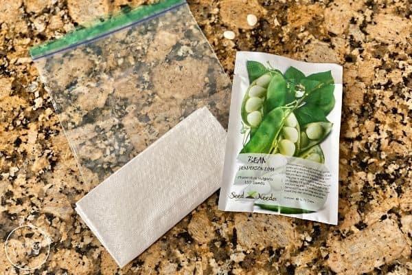 Fold Paper Towel