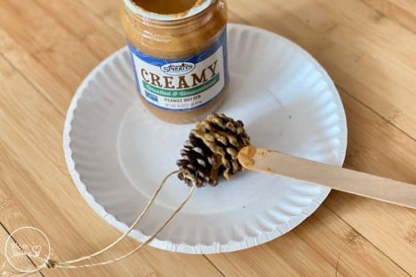 Pinecone Bird Feeder Spread Peanut Butter